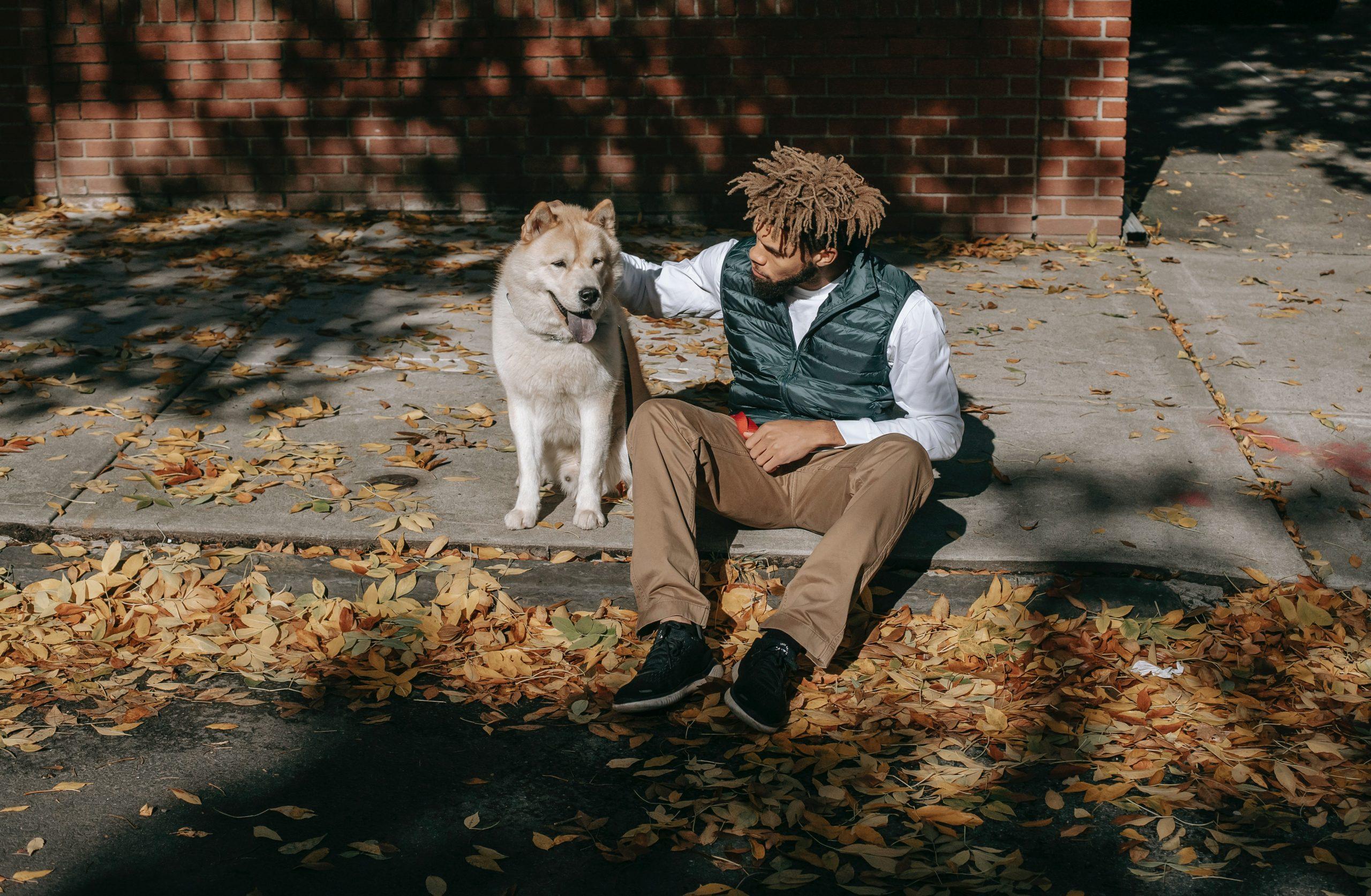 Hund und Baby: Gewöhnen Sie Ihren Hund an das Baby